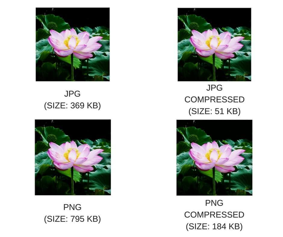 Image-Optimization-With-File-Type JPG vs PNG