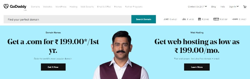 GoDaddy Domain Registration