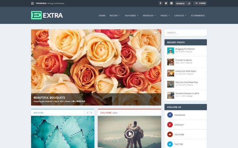 Extra Magazine WordPress Theme & Visual Page Builder